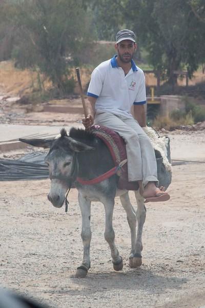 160926-064616-Morocco-0770.jpg