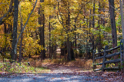 20151031 Allaire State Park