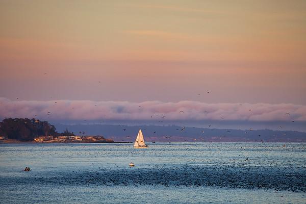 San Francisco & Santa Cruz