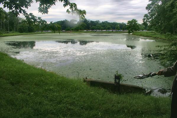 ADP Florham Park Pond Trail System, 2013 and 2016 photos