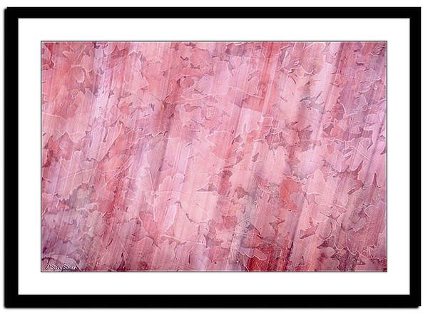 Frozen Black Oaks Leaf Abstract