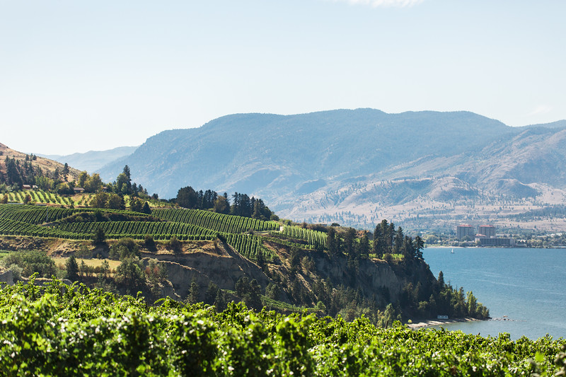 20160914_BC Wine Institute - Central & Southern Okanagan-1702.jpg