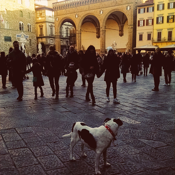 Firenze MOB (83).jpg