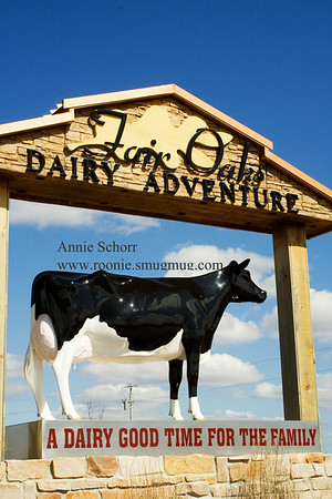 Fair Oaks Dairy Farm