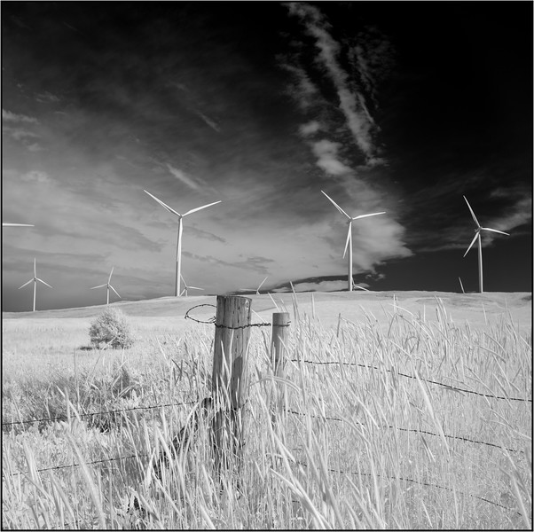 Gated wind