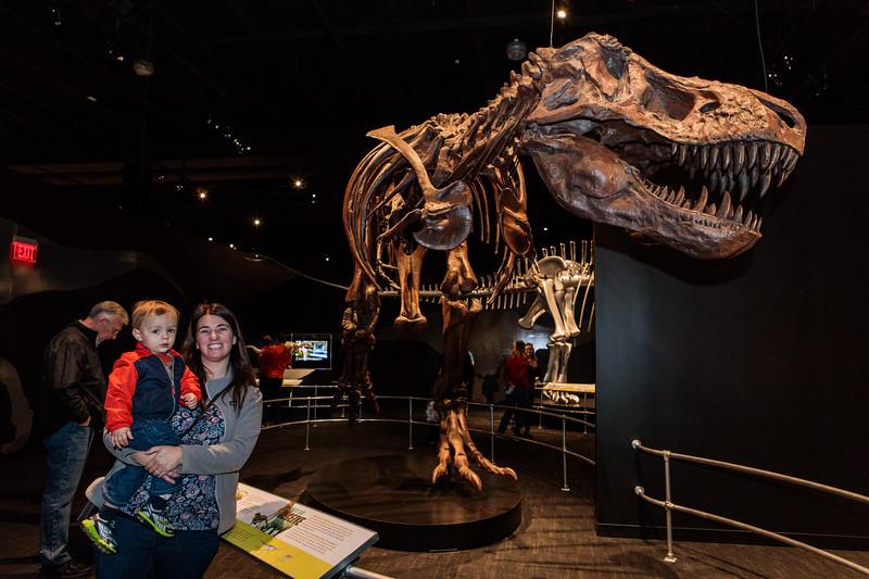 COSI-Dinosaurs-Exhibit-116.jpg