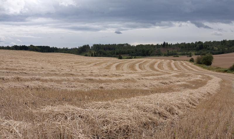 Høst2010-103