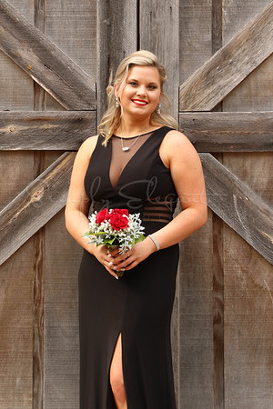 Colquitt Co Prom 2K19 - Jewell Casey