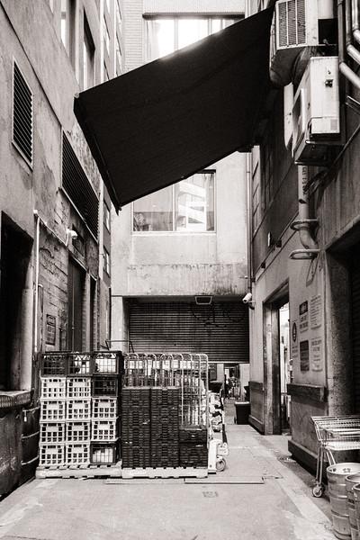 Rothsay Lane