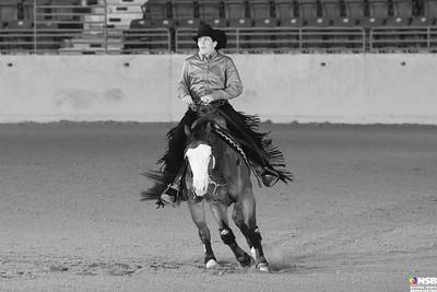 Wednesday Novice Horse Set 2 9-15