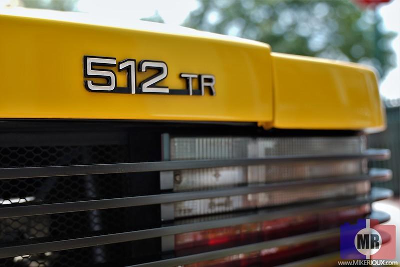 DSC03509-retouch.jpg