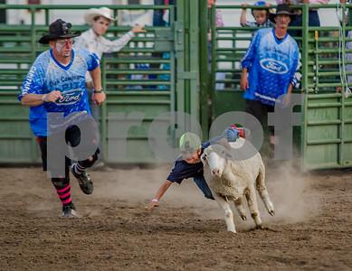 Carson City Rodeo 31JUL15
