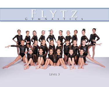 FLYTZ USA Gymnastics 2016