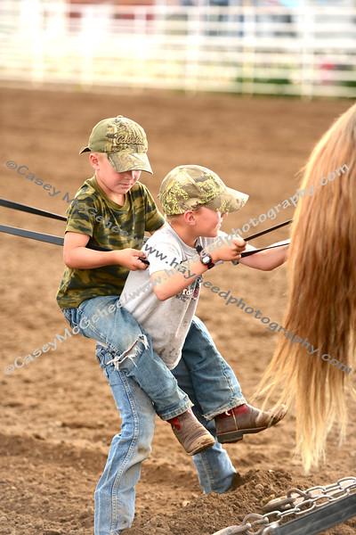 Shoshone Draft Horse Pulls 7/22/15