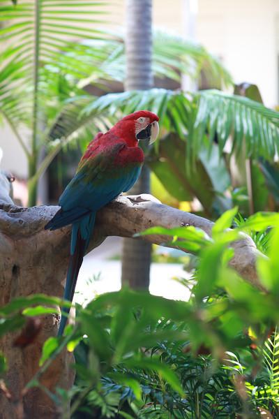 Kauai_D5_AM 199.jpg