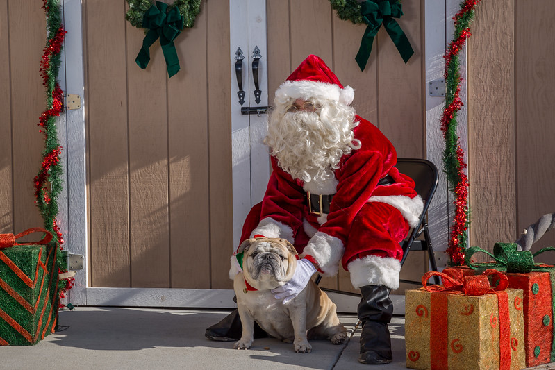 Pet Pictures With Santa-103.jpg