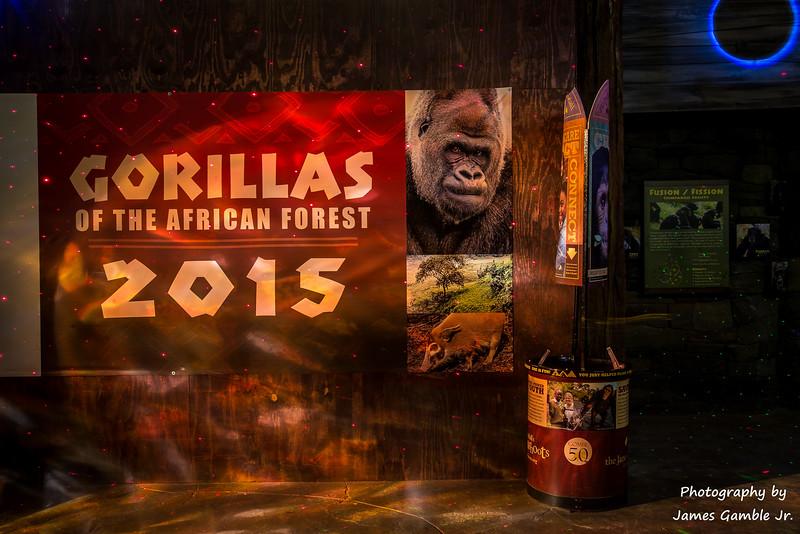 Houston-Zoo-Lights-3088.jpg