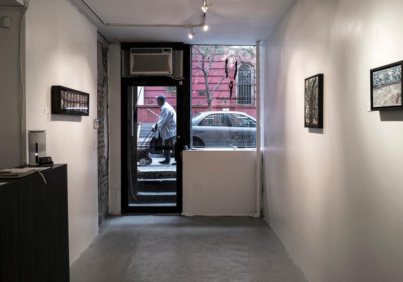 Tally Beck Contemporary Gallery Interior.jpg