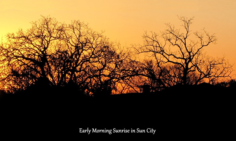09-Sun City Sunrise.jpg