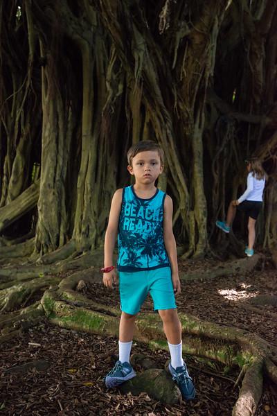 Hawaii2019-203.jpg