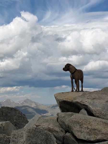 Mt Evans 7-25-2010 (296).jpg