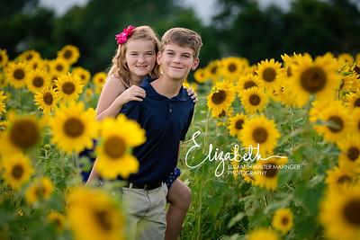 Sunflowers_20200815