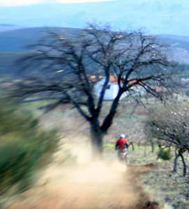 Douro 2005