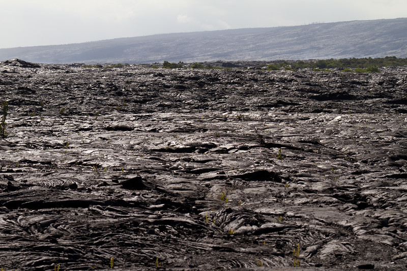 Lava fields at Roads End Highway 130