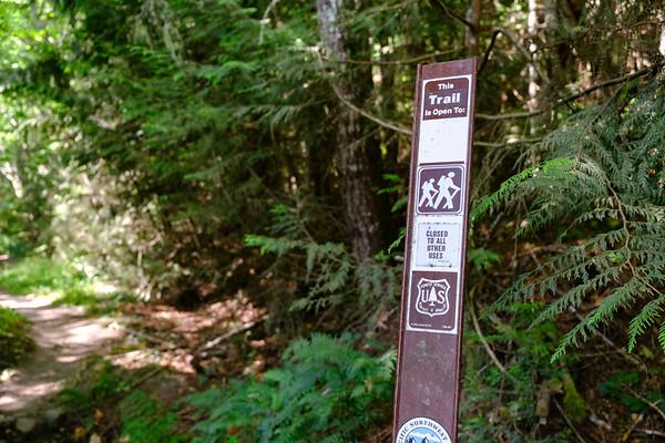 Gray Wolf Trail - Buckhorn Wilderness