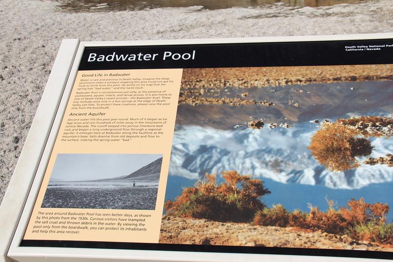 20190518-068-SoCalRCTour-Bad Water Pool-DeathValleyNP.JPG