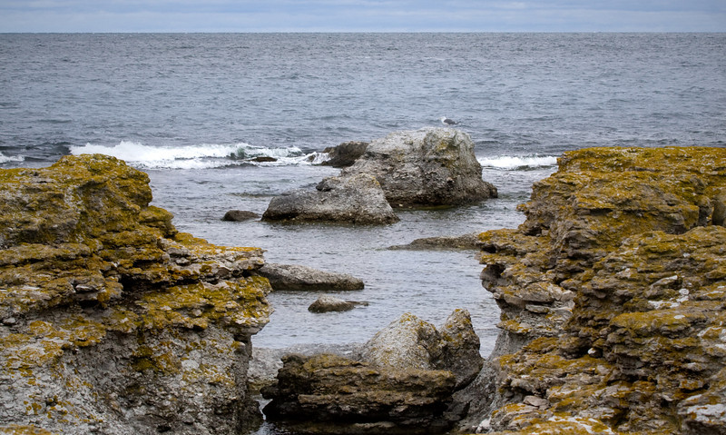 Gotland 20110608_0040.jpg