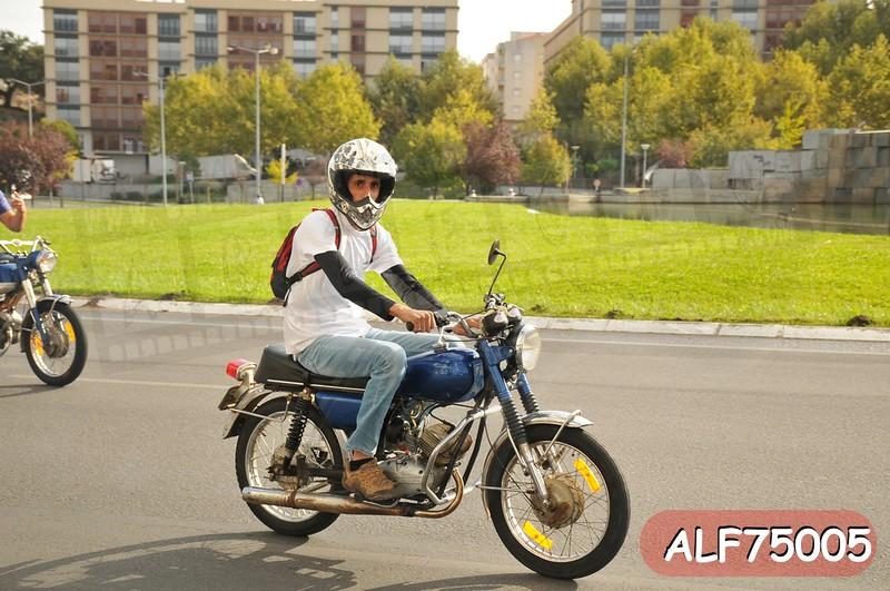 ALF75005.jpg