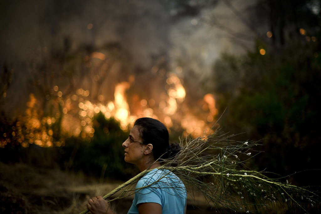 . A local stands with a branch in her hand during a wildfire in Caramulo, central Portugal on August 29, 2013.   AFP PHOTO / PATRICIA DE MELO  MOREIRA/AFP/Getty Images