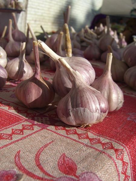 Garlic at Osh Bazaar, Kyrgyzstan