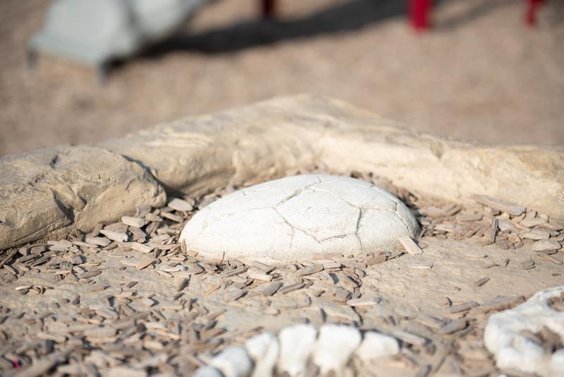 Meadowview Dinosaur Playground