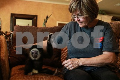 mineola-woman-operates-licensed-private-zoo-cares-for-animals