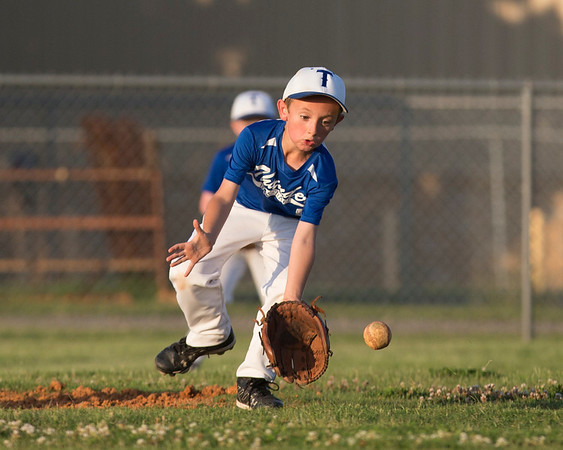Little League Baseball 2014