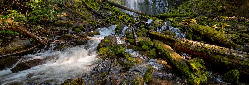 Proxy Falls Cascade.jpg