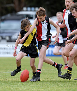 Junior Colts 2020 - Grand Final