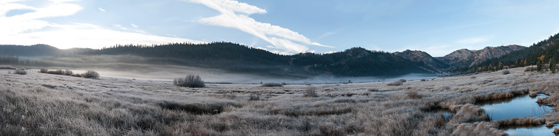 Squaw Valley meadow early morning