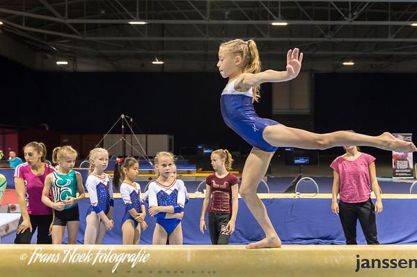 Fantastic Gymnastics 2014