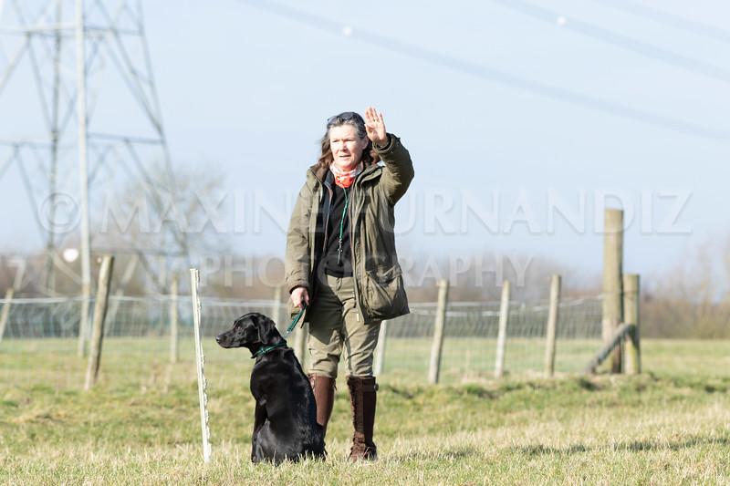 Dog Training Novice GD Feb2019-5781.jpg
