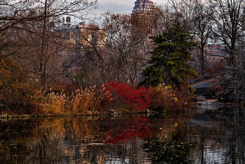 Central Park Boat Lake.jpg