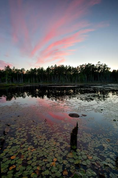 The Ice Pond, Georgetown, Maine (8902-8903)