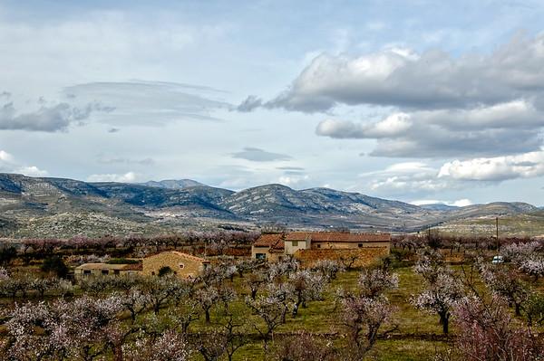 Spain  -  El Maestrat campo