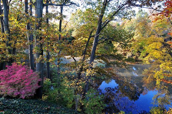 New Jersey Fall
