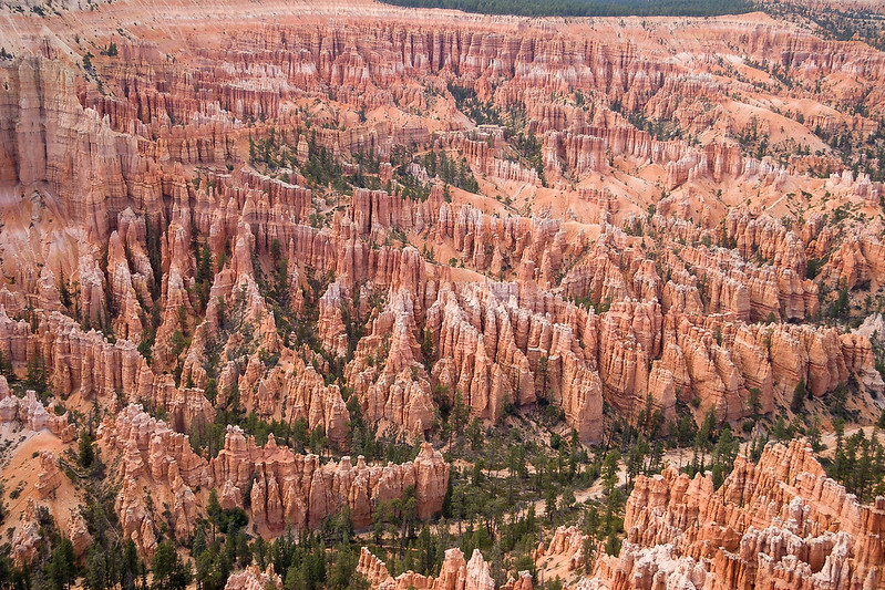 View from Peek-a-Boo Trailhead in Bryce Canyon