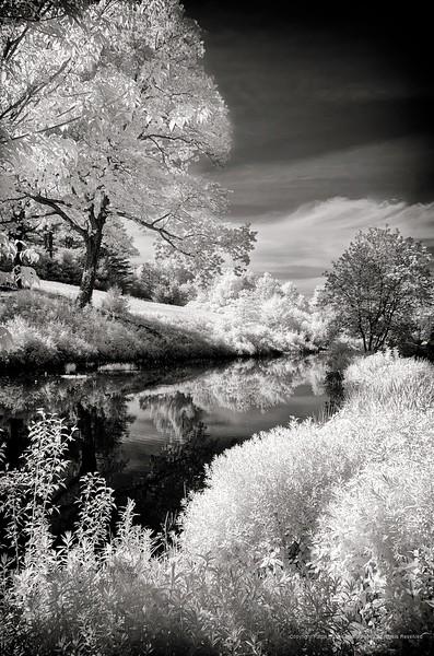 Hollister House Garden, Washington, CT infrared