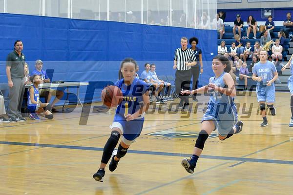 Girls MS Basketball 1.11.20