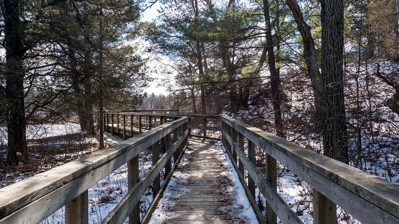 Ontario-Grand-Bend-Pinery-Provincial-Park-52.jpg